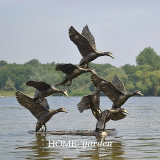 ducksflyinggg