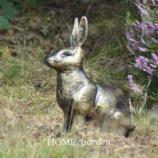rabbitsittt