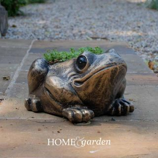 toadplanter